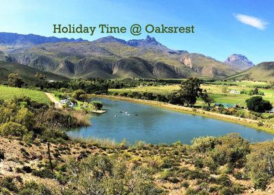 oaksrest-vineyard-campsite-34
